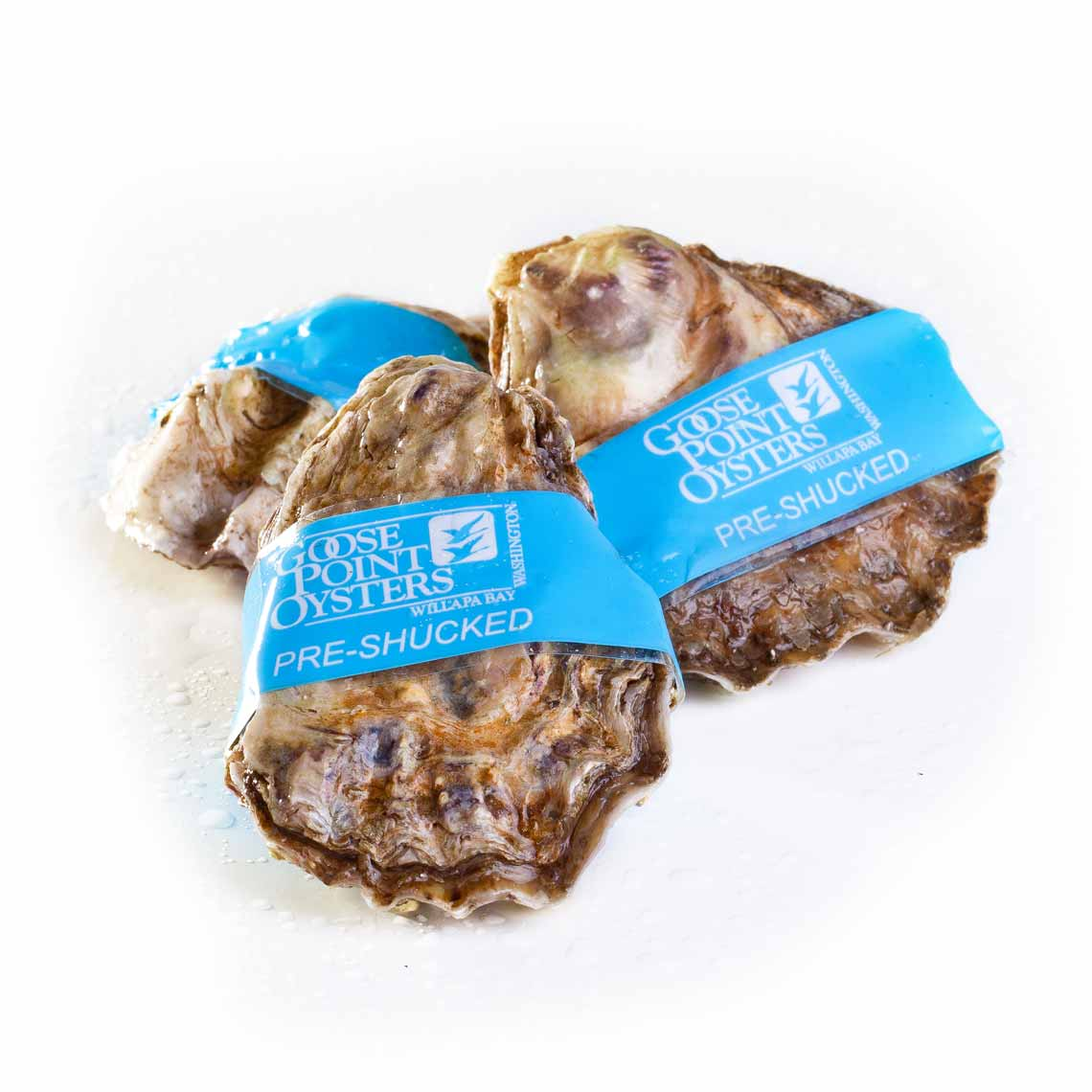 Goose Point BlueSeal™ Pre-Shucked Oysters