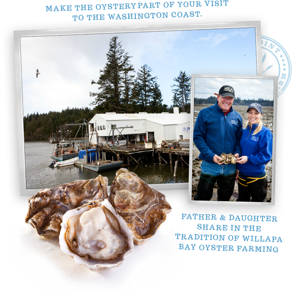 Goose Point Oysters, facility, family owned