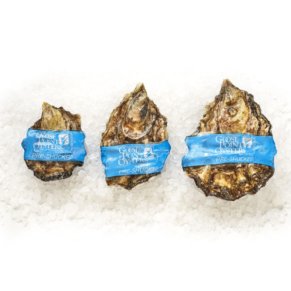 Goose Point Blue Band Oysters, XS, S and M